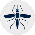 Ico Punture d'insetto Bianco